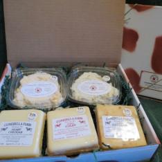 2015-large-cheese-box